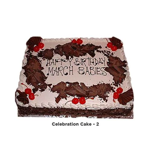 celebration-Cake-2
